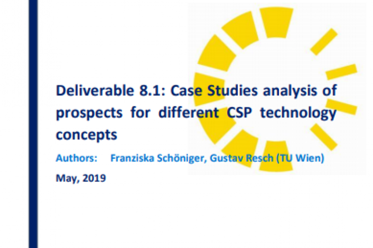 Report: Case Studies analysis of prospects for different CSP technology concepts